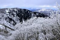 霧氷 - 富士山に夢中