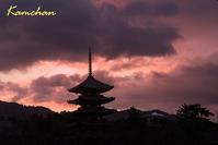 雪を期待して奈良公園へ - カンちゃんの写真いろいろ