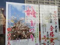 久しぶりの東京⓵湯島天神 - 妙見山麓をわたる風