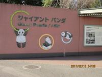 久しぶりの東京②パンダを見る - 妙見山麓をわたる風