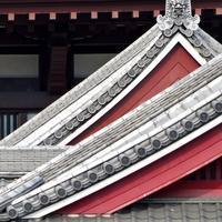 武蔵野紀行6 - はーとらんど写真感