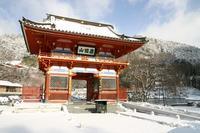 箕面勝尾寺の冬景色 - 浜千鳥写真館