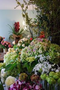 お花いっぱい♪ - 花と暮らす店 木花 Mocca