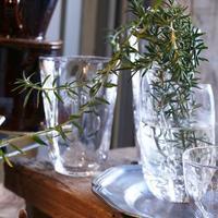 rosemary 🌿 - Photo koaniani