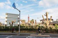 ニコン応援団〜萩崎町〜 - ライカとボクと、時々、ニコン。