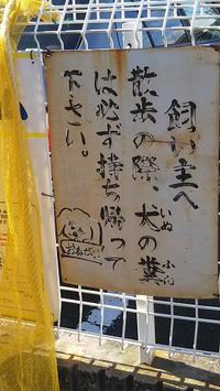 ペット向け看板コレクション27 - ウンノ整体と静岡の夜