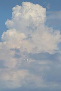 立ちはだかる - 南の島の飛行機日記
