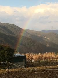 虹の褒美 - アンクル・アントの農園日記