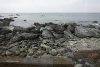 越前の海岸 - 幸宗の徒然写真