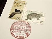 『春のポストカードまつり』終了しました - 湘南藤沢 猫ものの店と小さなギャラリー  山猫屋