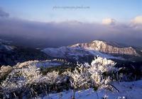 氷ノ山-7 - Photo Tajima~フィルム&デジタル