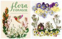 book:「Flora Forager」 - 英国メディカルハーバリスト