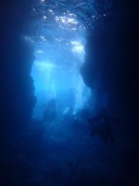 2月22日今日だけ海、落ち着きました!! - 沖縄・恩納村のダイビング・青の洞窟体験ダイビング・スノーケルご紹介