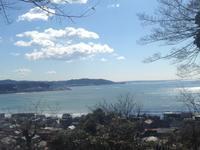 久しぶりに春の長谷寺 - パームツリー越しにgood morning        アロマであなたの今に寄り添うブログ