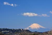 雲? 煙? 『90km先の富士山』 - 写愛館