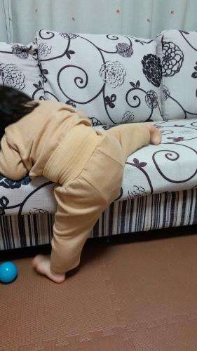1歳5ヶ月 - わがやのこと