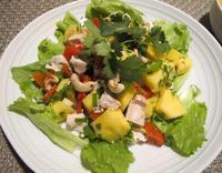 鶏肉とパイナップルのベトナム風サラダ - やせっぽちソプラノのキッチン2