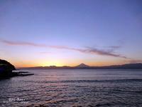 早春の鎌倉&江ノ島 その1 - ぶうぶうず&まよまよの癒しの日記
