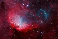 白鳥座の宇宙の花チューリップ星雲Sharpless2-101 - 秘密の世界        [The Secret World]