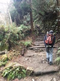 冬の日本へ一時帰国。その3 ー 父と登った大文字山 - イギリス 西ウェールズの田舎暮らし