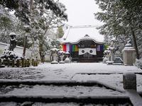 京の雪景色~智積院&通天橋 - 徒然彩時記