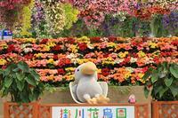 雨の日de掛川花鳥園♪ - happy-cafe*vol.2