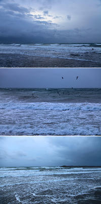 2017/02/23(THU) 南西からの強風でジャンクな海です。 - SURF RESEARCH