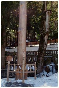 諏訪大社 上社本宮 -3 - Camellia-shige Gallery 2