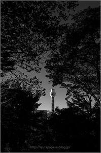 Marine Tower - りゅう太のあしあと