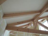 「大屋根中庭の家/岡崎」 リビング天井シナ合板張り - KANO空感設計のあすまい空感日記