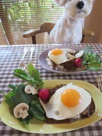 朝カレー♪ - おぽログ♪