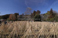 茶筌の里 生駒高山 - ratoの大和路