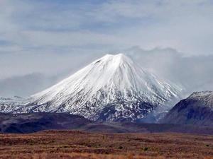 はずれでした - いい旅・夢Kiwiスカイキウィの夢日記
