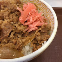牛丼並@すき家 - 香港と黒猫とイズタマアル2