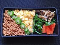 2/24 そぼろ丼弁当 - ひとりぼっちランチ