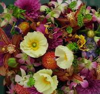 花のギフト ポピーとダリア - 一会 ウエディングの花