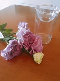 お花をいただきました。 - 日々のIRODORI