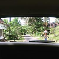 バリ・ウブド旅②*手相を見てもらいにシドゥメン村へ - サミログinシンガポール ーシンガポールLife備忘録ー