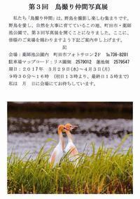 鳥撮り仲間写真展のお知らせ - あだっちゃんの花鳥風月