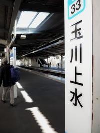 東京そぞろ歩き:玉川上水を歩く(その4) - 日本庭園的生活