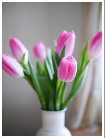 春へ - おいしく、楽しく。