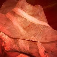 羊毛のスカーフ - ワタシ流 暮らし方   ~建築のこと日常のこと~