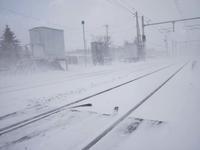 2月24日 今日の写真 - ainosatoブログ02