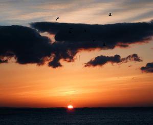 夜明けの海 - 風の吹くまま