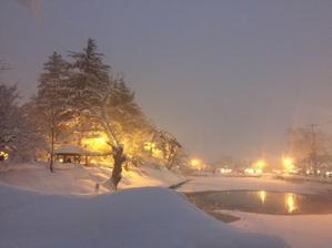 雪の米沢へ② - すみれ堂きものDiary