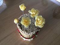 蝋梅(ろうばい) - 布花館へようこそ