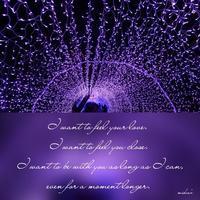 「3つの願いから」 - わたしの写真箱 ..:*:・'°☆