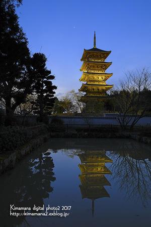 備中国分寺ライトアップ2/23 - 気ままな Digital PhotoⅡ