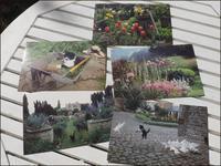 E-Garden Post Cards - L'Ambiance du Midi