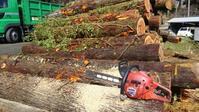 木こりのお仕事 - 木こりの気ままなLIFE STYLE。